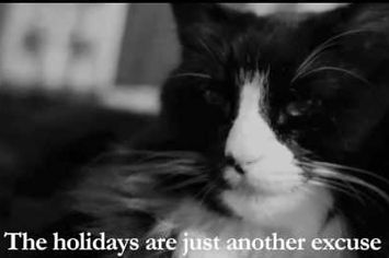 Henri The Existentialist Cat Learns About The True Meaning Of Christmas