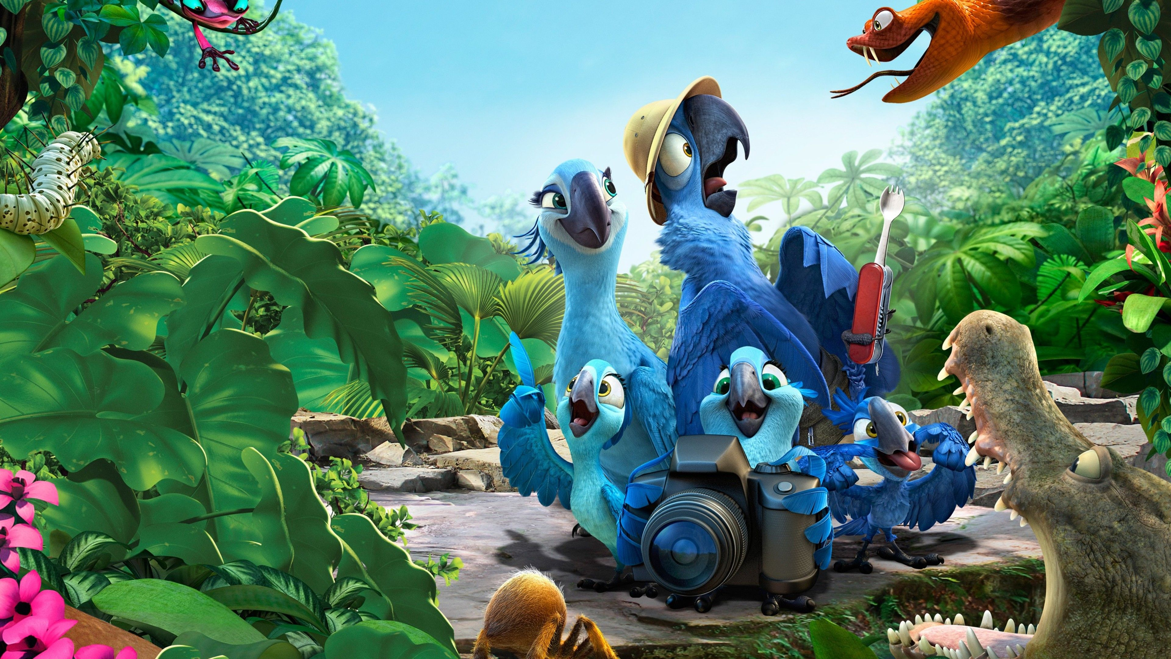Rio Movie Wallpapers HD Wallpapers | wallpapers | Rio 2 ...