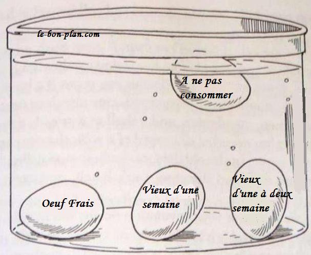 Comment Savoir Si Un œuf Est Toujours Consommable Trucs Et Astuces Cuisine Astuces Trucs De Cuisine