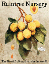 Raintree Nursery Catalog And Website Specialize In Fruit Trees Nut Berries