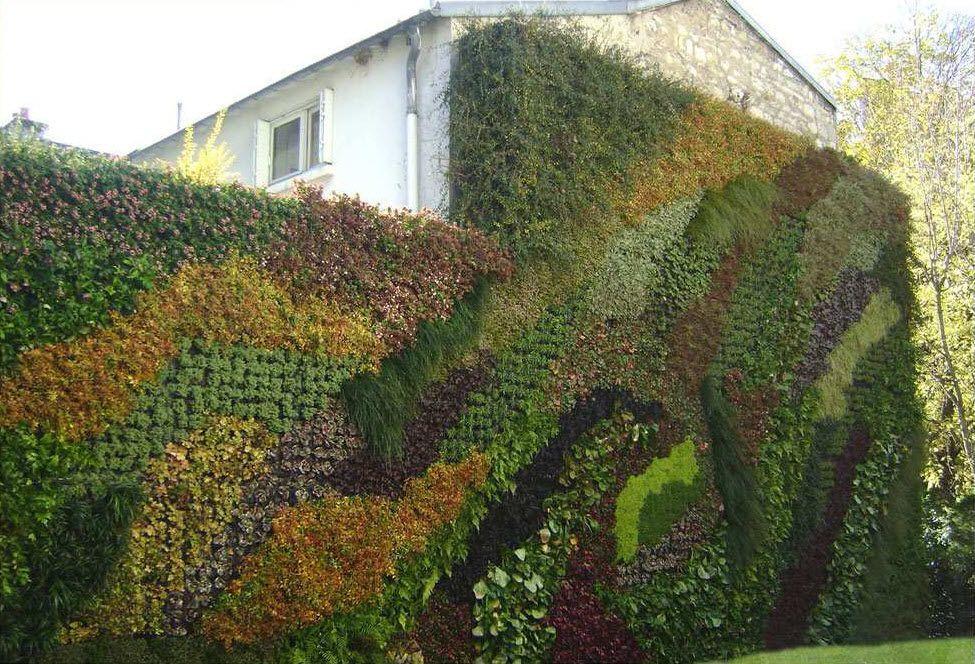 Muro vegetal de exterior green living walls verticle for Que planta para muro exterior vegetal