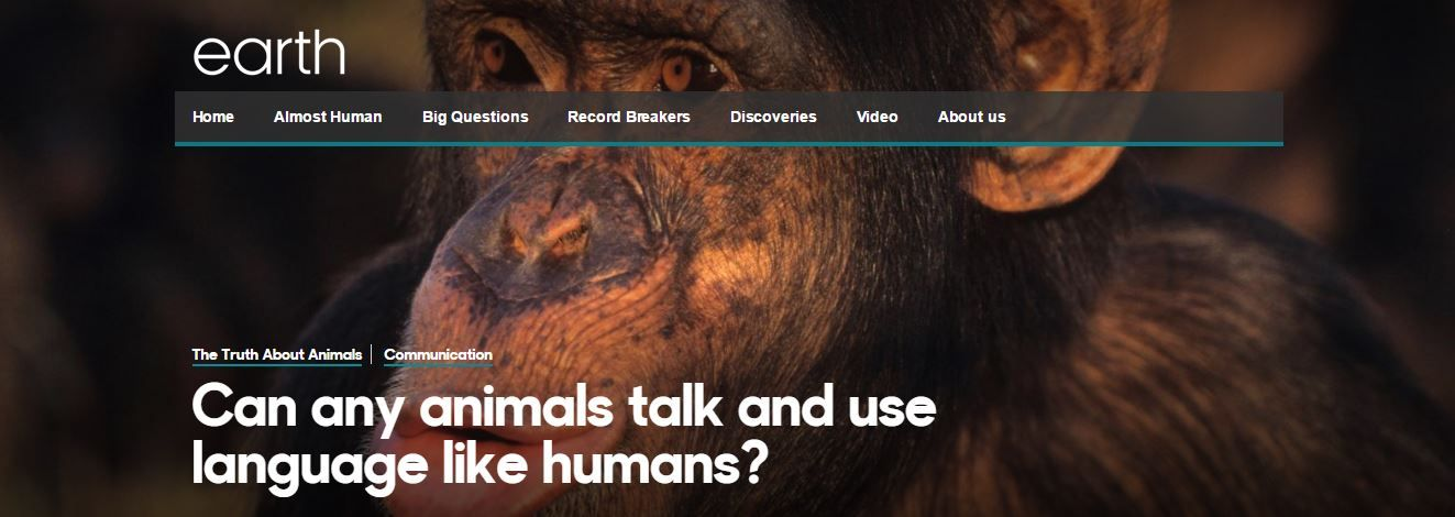 Can any animals talk and use language like humans?