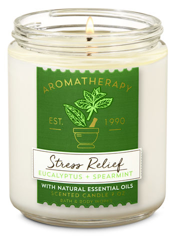 Eucalyptus Spearmint Single Wick Candle - Aromatherapy