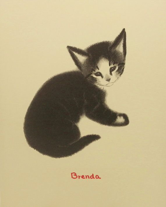Black Kitten.   1990s  illustration from a children's story first published in the 1940s by Clare Turlay Newberry.
