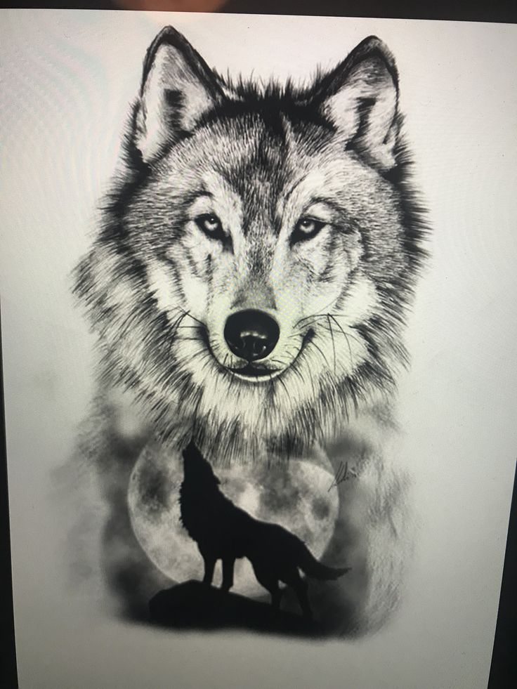 удалось фото тату эскизы волка этом маршруте
