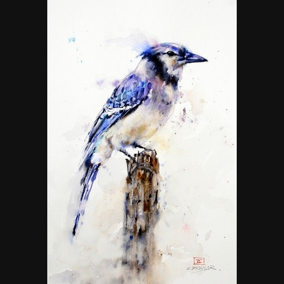 Blue Jay Print From Watercolor Painting By Dean Crouser Bird Art