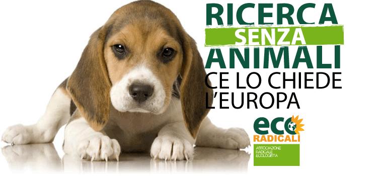 Vivisezione. Ricerca senza animali: ce lo chiede l'Europa.