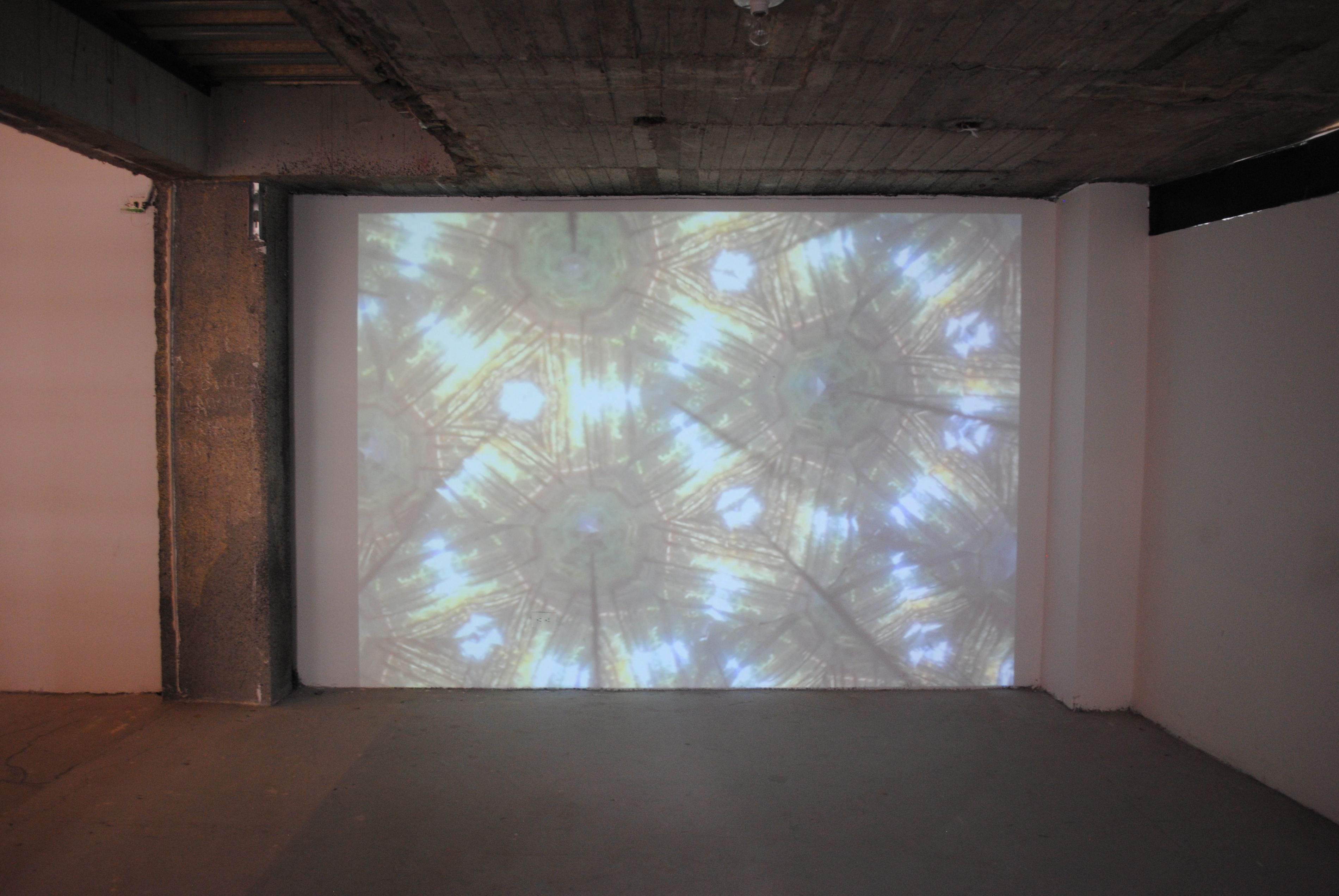 GVA-BOG- Alexandre Joly Video Projection - Exhibition curated by artist Lucia Moure