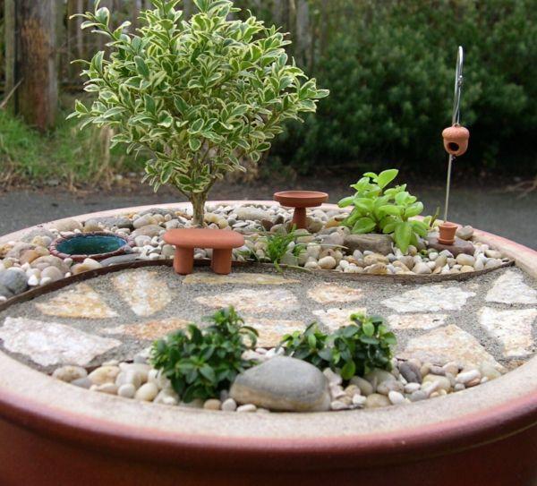 Kleine Gärten Steingarten Baum Sukkulenten | In The Mini Garden ... Mini Garten Aus Sukkulenten Selber Machen