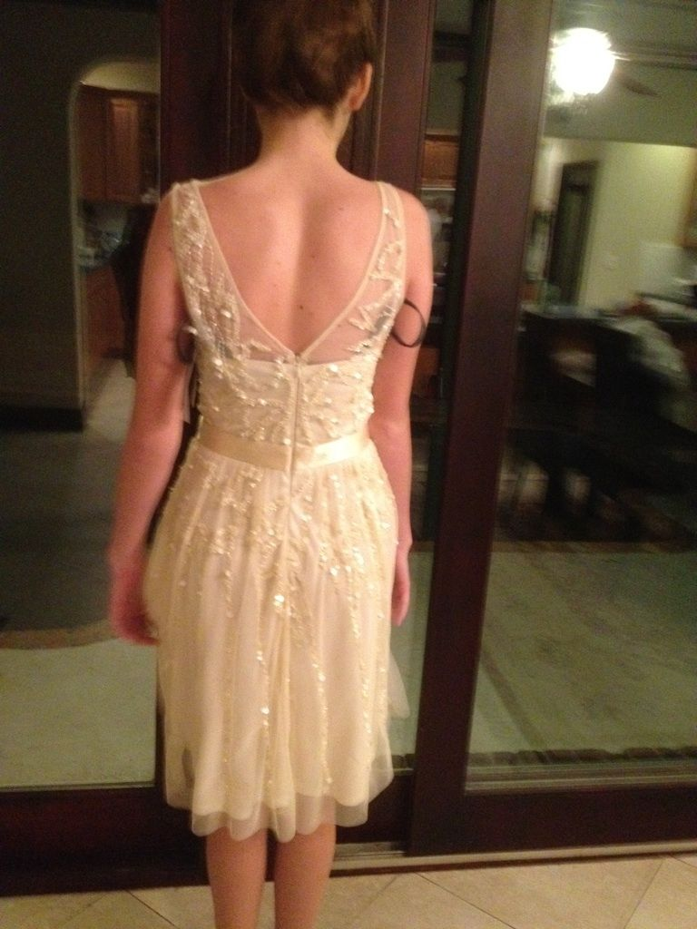 Priscilla of boston wedding dress  and the back ucause sheus so thorough  he liked it so he put a