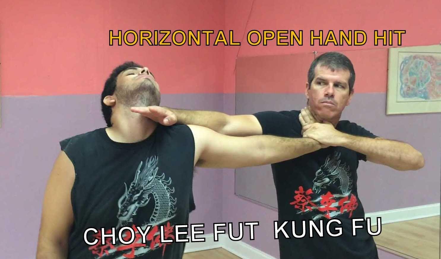 Kung Fu Horizontal Open Hand Hit   Open hands, Kung fu, Hands