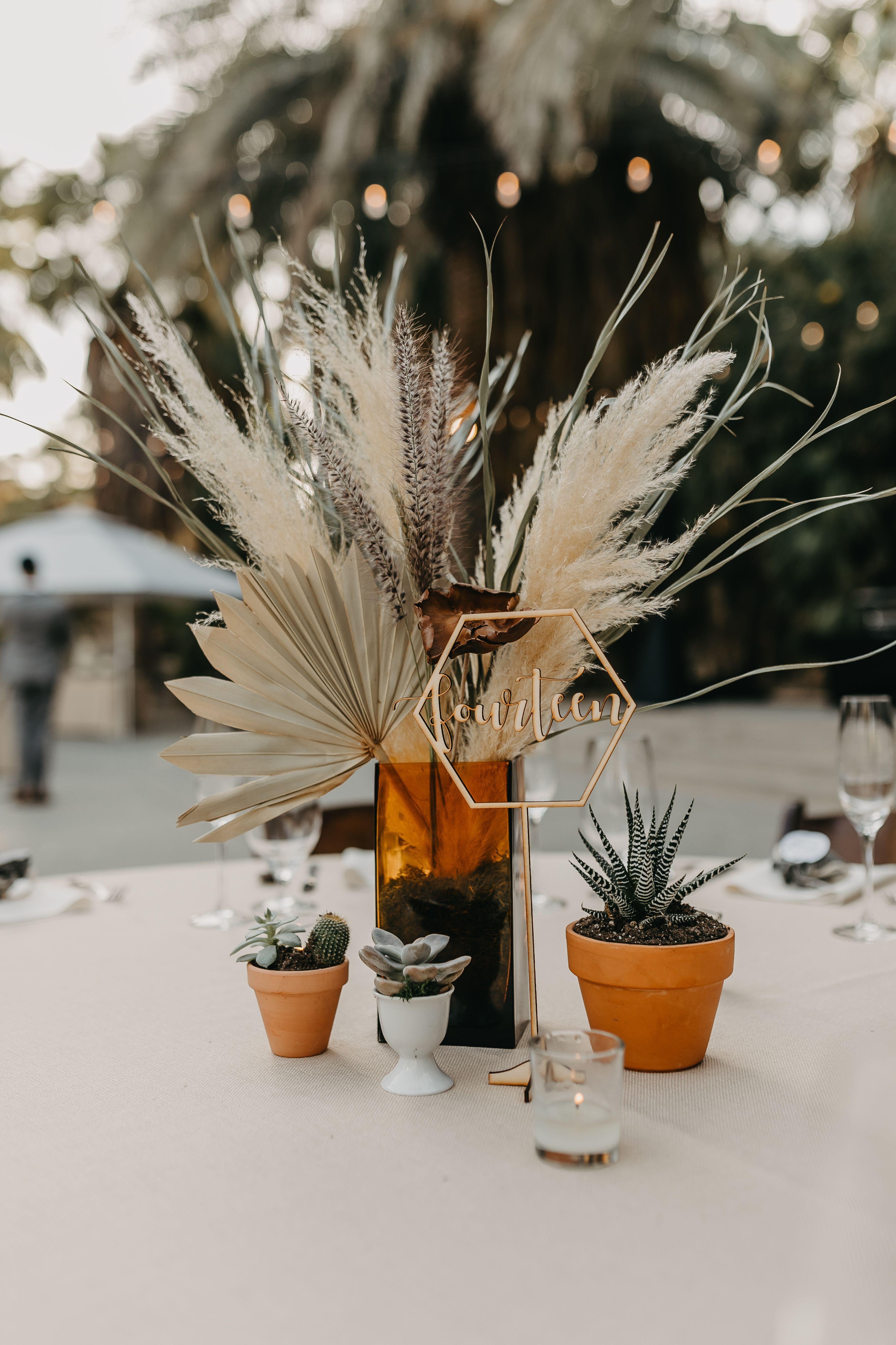 Diy wedding centerpieces 859554278865792501 -  The Living Desert Zoo Wedding Palm Desert wedding, the living desert zoo and gardens, desert wedding, cactus centerpieces, succulent centerpieces, dri…  #Desert #living #Wedding Source by seriande0404