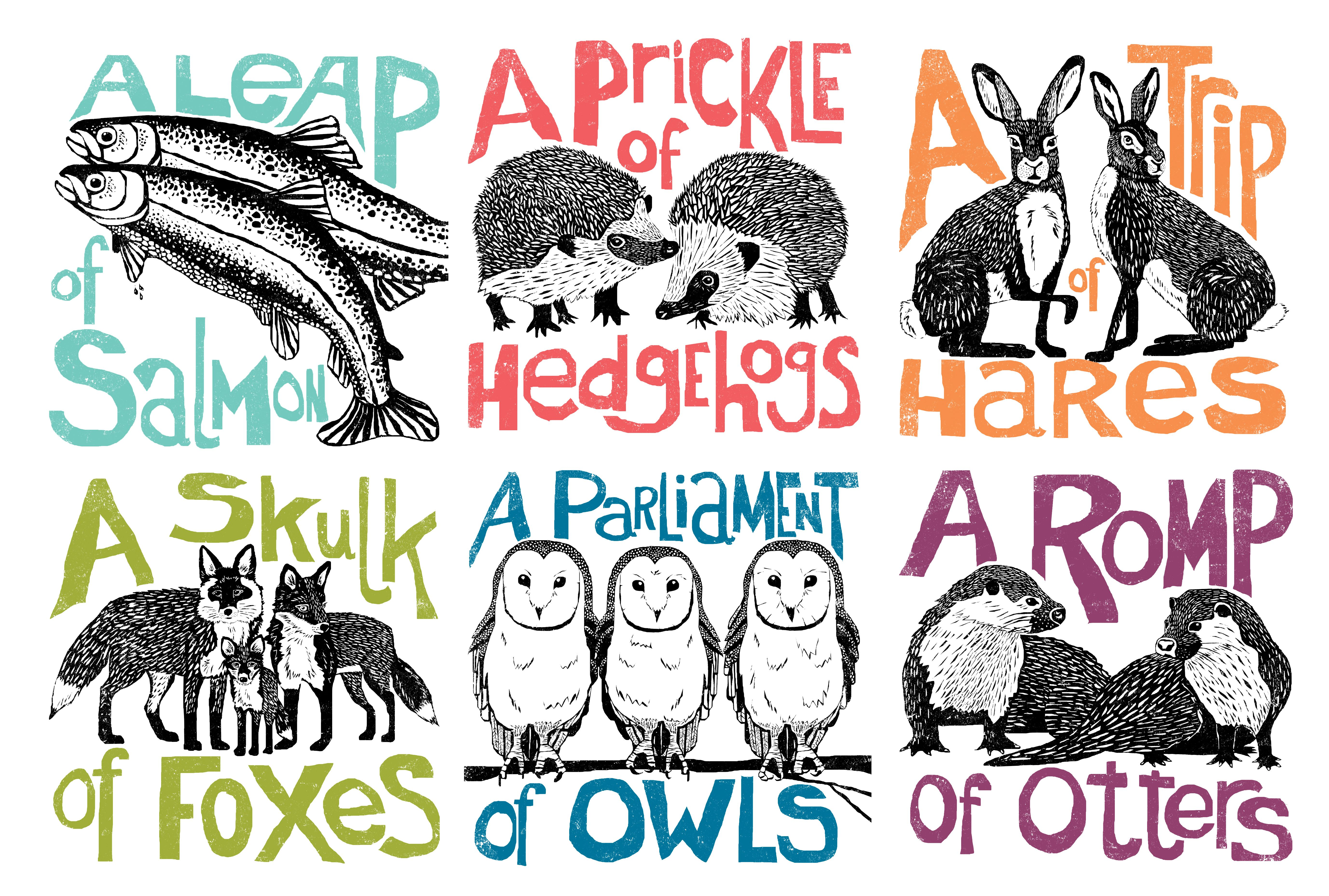In today's post, I'd like to look at collective nouns and