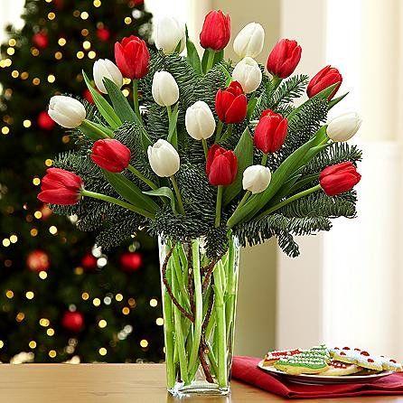 20 Christmas Tulips – Christmas Flowers, Christmas Gifts, Christmas Gift Ideas, …