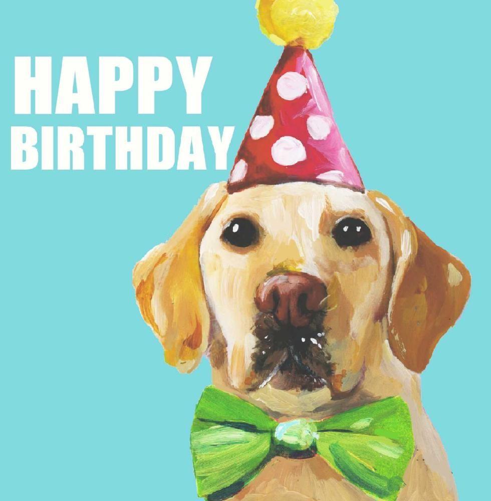 День рождения собаки открытки