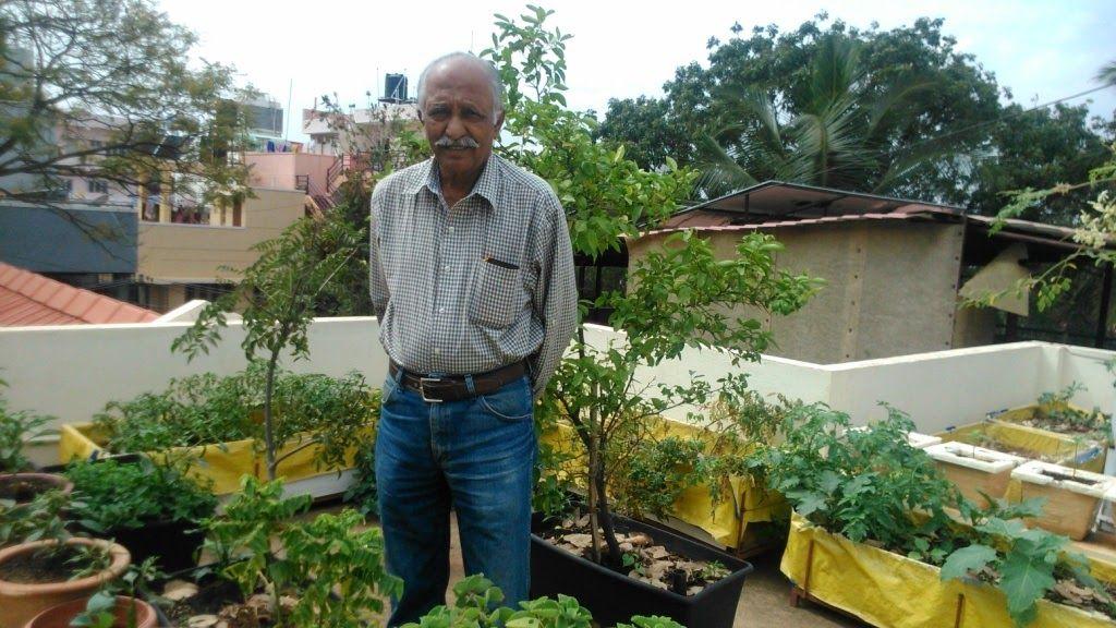 Simple Terrace Garden Ideas