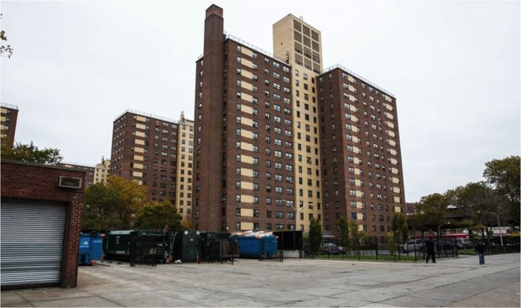 Brownsville Partnership Brownsville Brooklyn Places In New York Brownsville