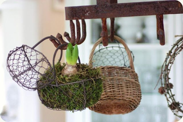 ah, hang a little spring bulb in a mossy basket from your pot rack :) (add more green to your kitchen)
