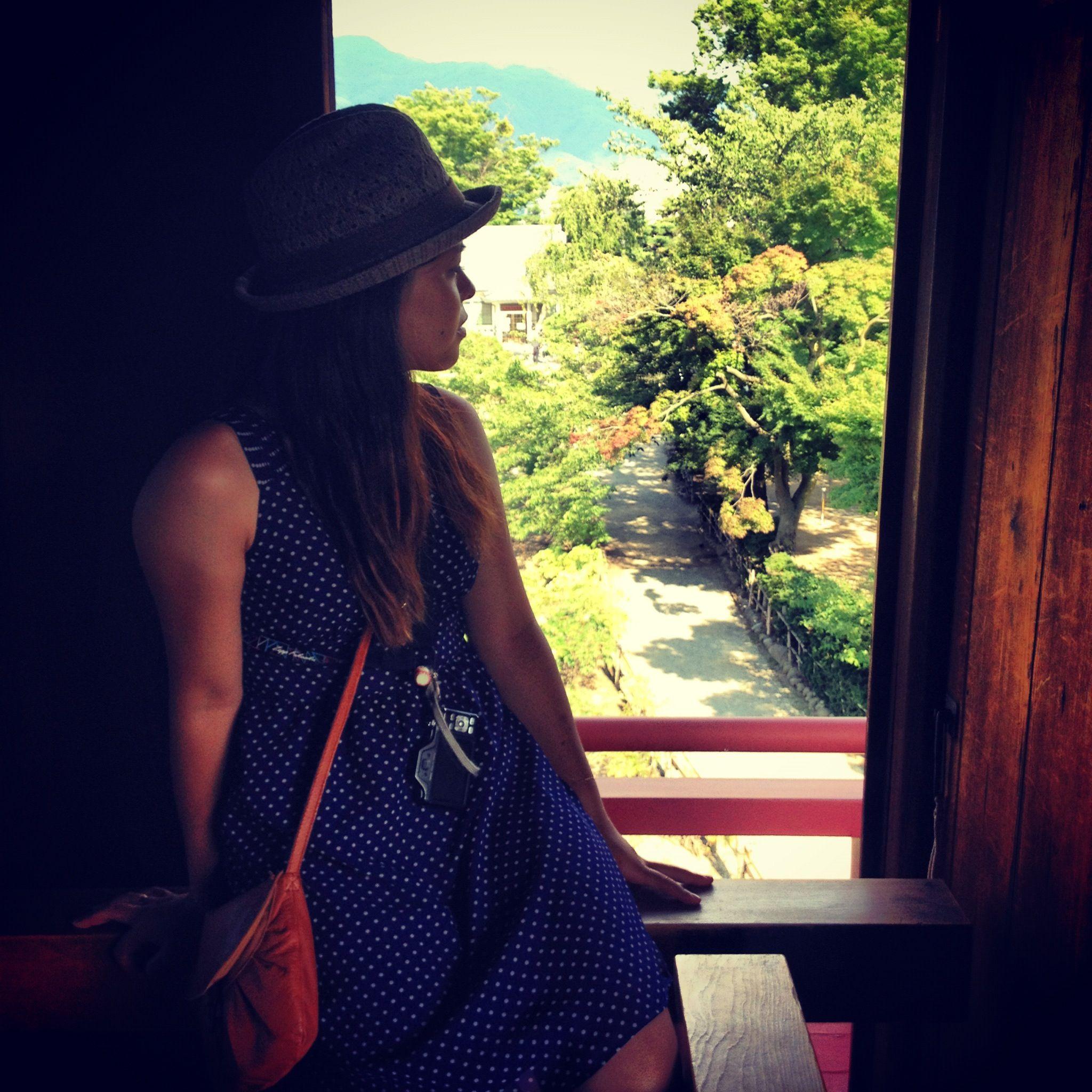 From Nagano-jyo, a Japanese castle