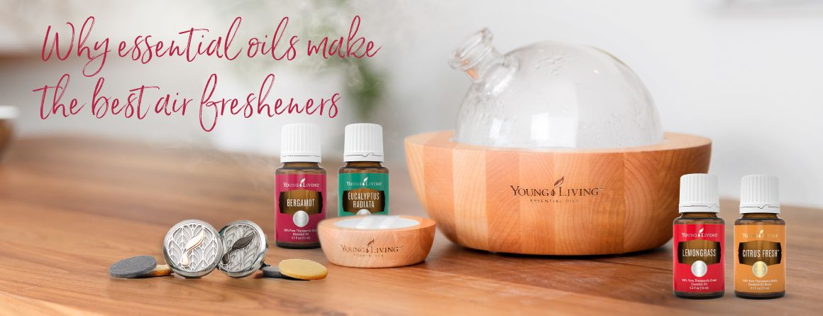 How To Make Bathroom Smell Nice All You Need To Keep Your