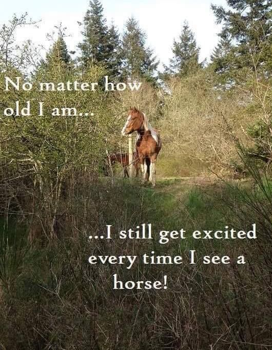 So true!  When I hear the sound of horse hooves on the street, I still go to the window to look...