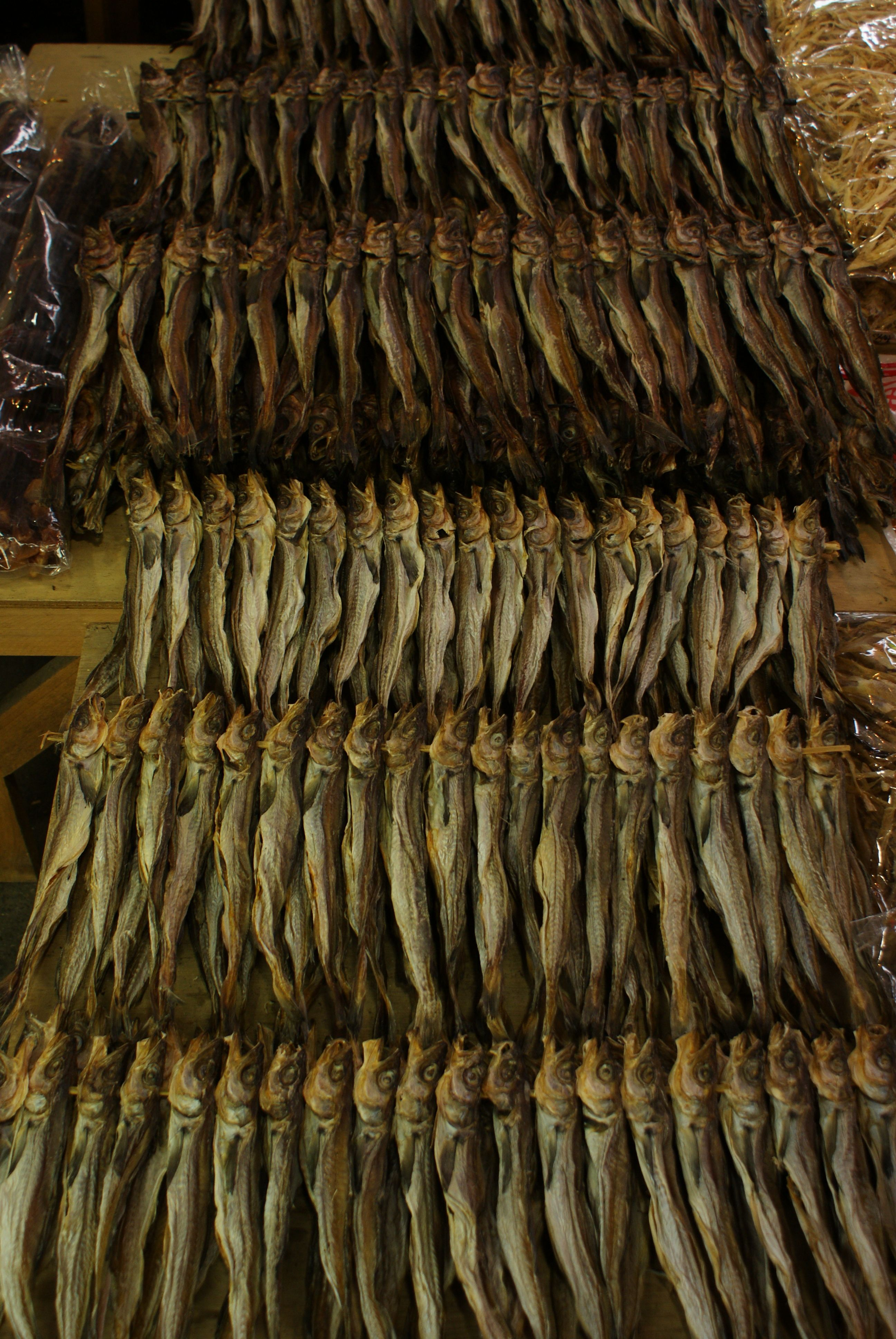 Dried Fish At Chungbu Market In Seoul Fish Design Fish Food