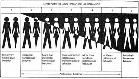 Bisexuality scale test