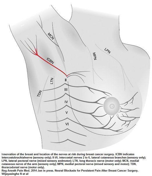 Random Sharp Pain In Nipple Breastfeeding