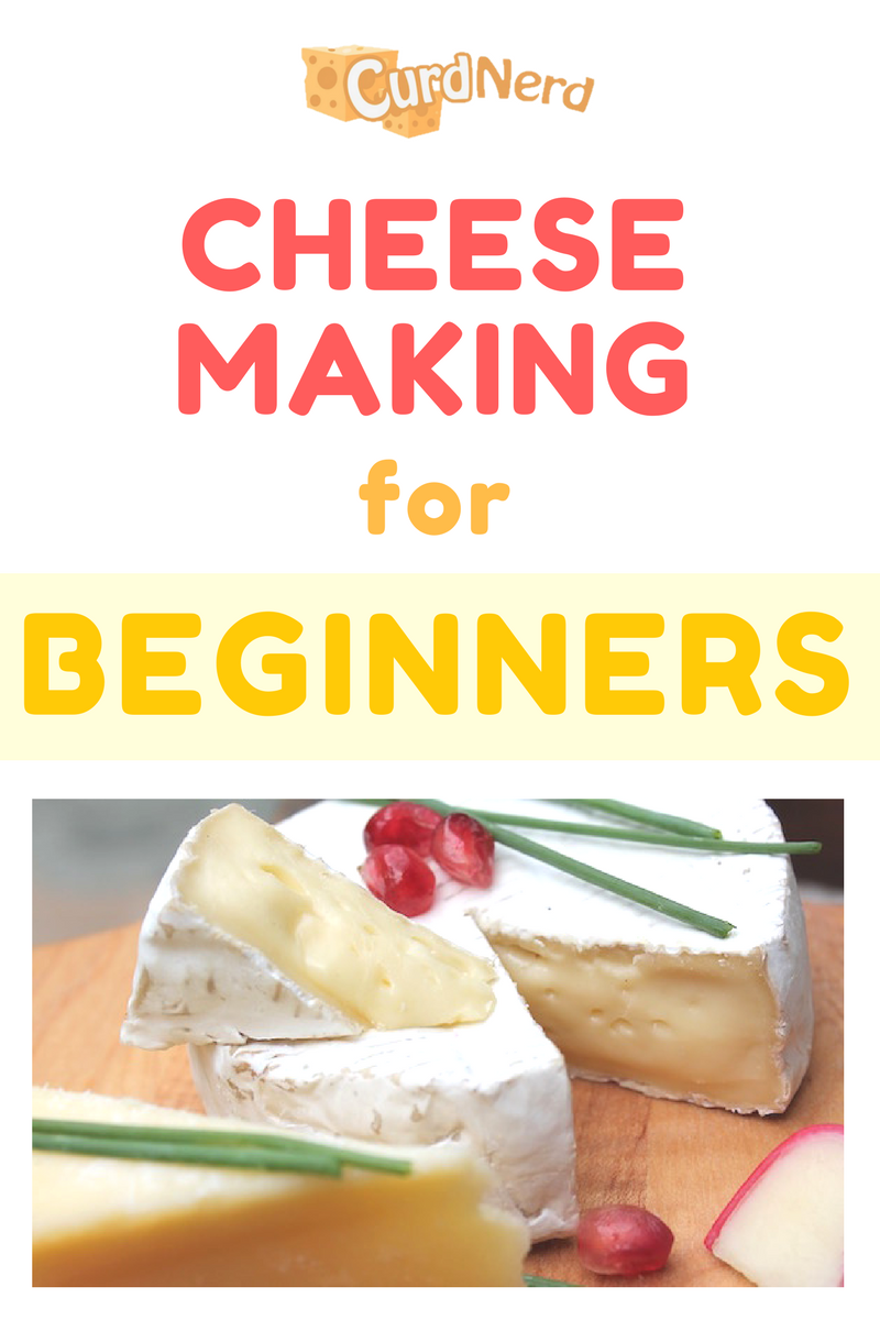Are You A Beginner To Home Cheese Making There Is A Whole World Of Information And Terminology To Learn And It Can How To Make Cheese Homemade Cheese Cheese