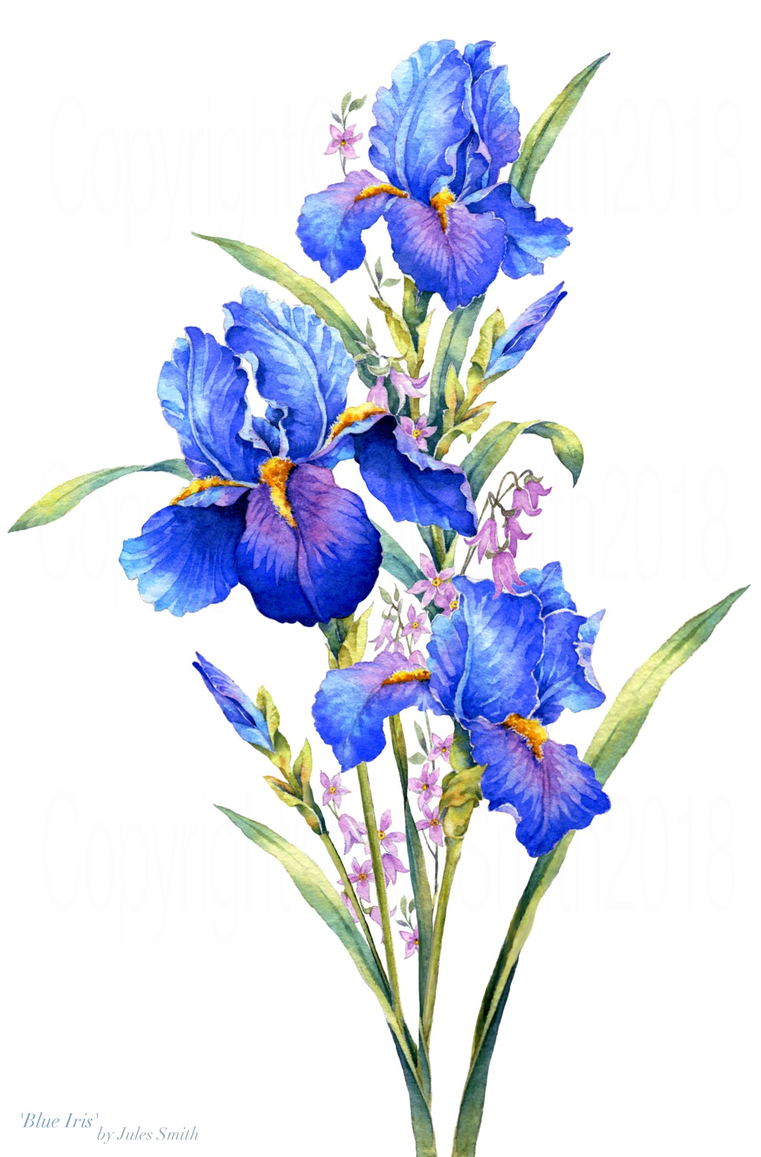 Watercolour Painting Blue Iris Inspired By The Natural Beauty Of Flowers Watercolor Flowers Paintings Iris Drawing Iris Painting