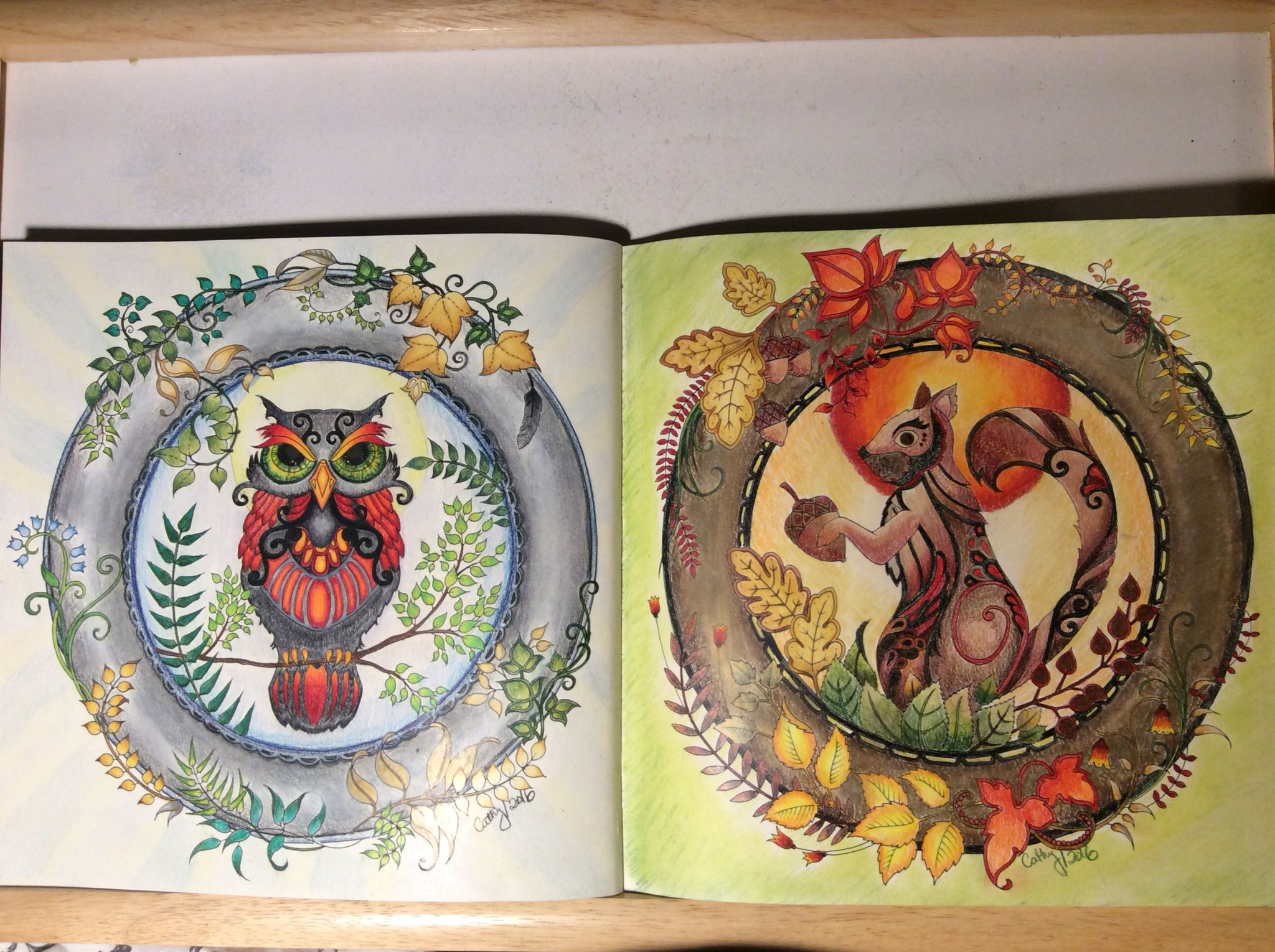 Owl And Squirrel Enchanted Forest Johanna Basford Cathyc Pencil Crayons