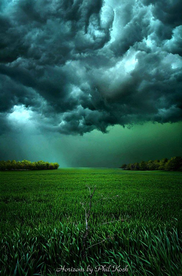 Storm chasers?  By Phil Koch  The green before a tornado - hail wall