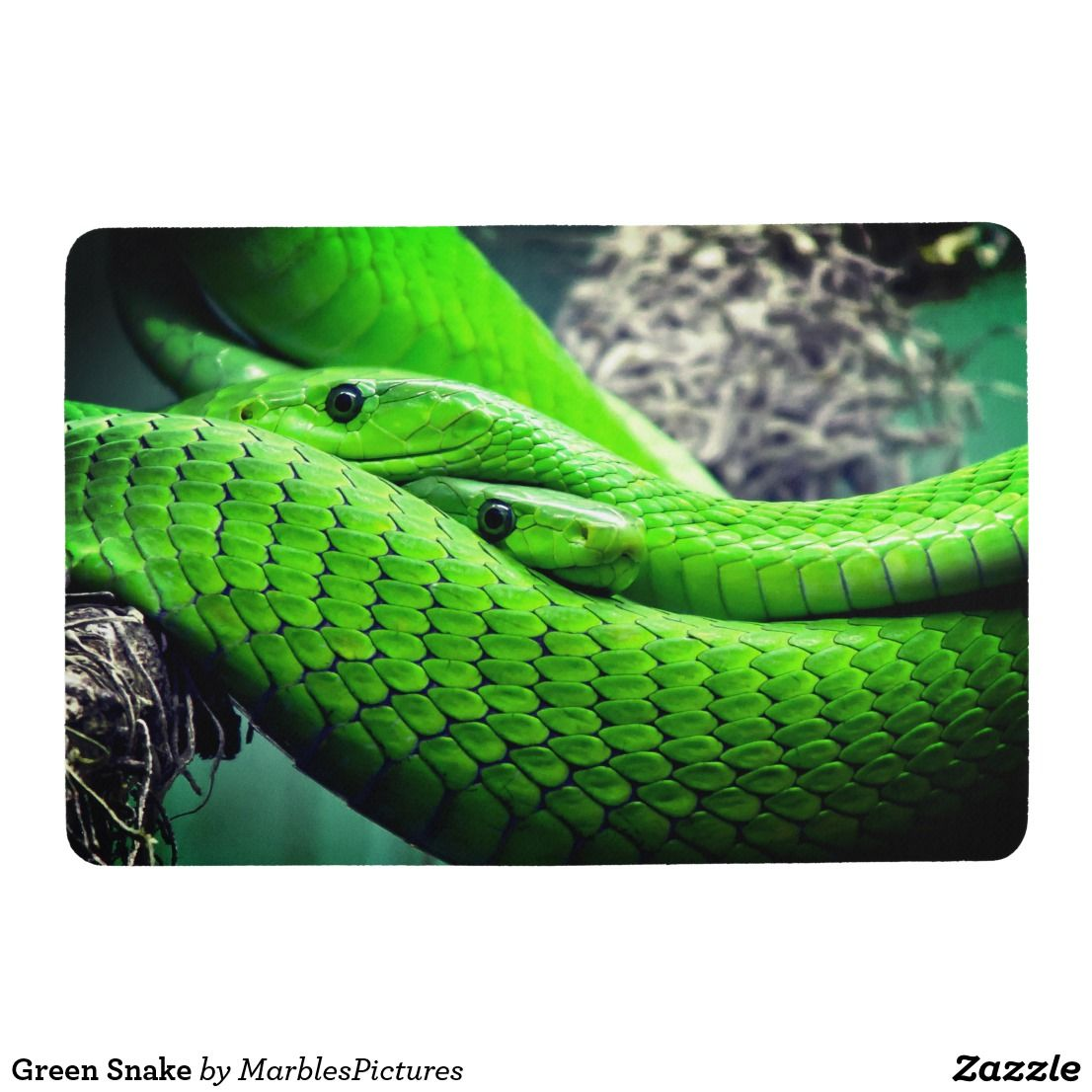 Green Snake Floor Mat Green snake, Snake