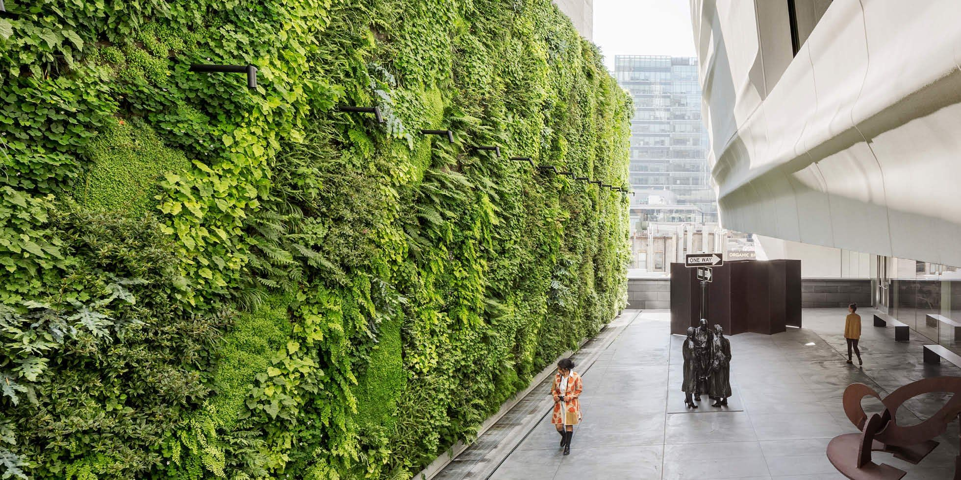 Everything Architects Need to Know About Green Walls