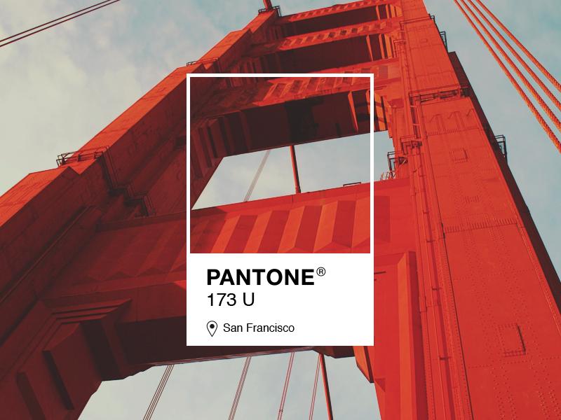 pantone 173 u color pinterest pantone