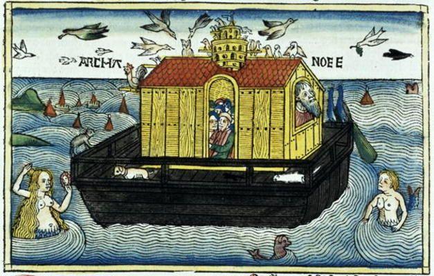 Ark Leinwand