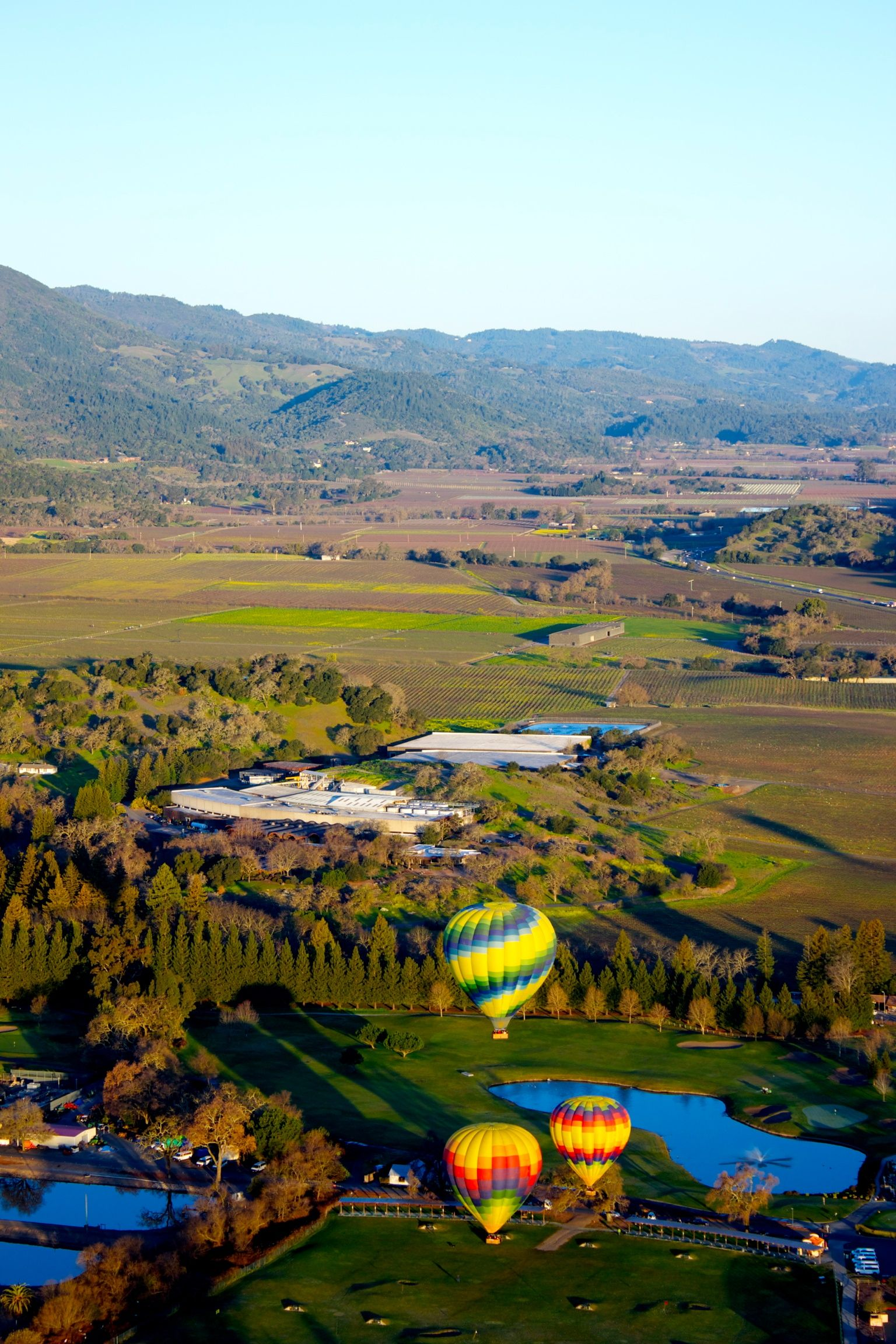Napa Hot Air Ballon Ride Hot air ballon, Hot air balloon