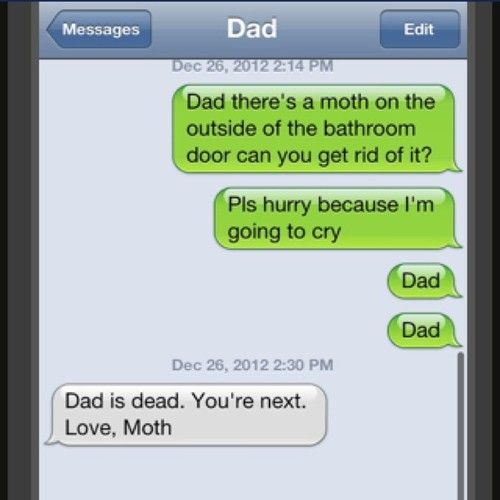 Why Are People Afraid Of Moths Funny Pinterest