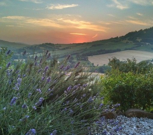 Genieten van het uitzicht vanaf B&B Lucertola in San Lorenzo in Campo (Pesaro-Urbino)