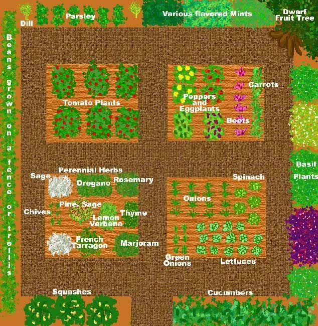 A Rough Design For A Kitchen Garden Based On The Average Garden Size. The  Center