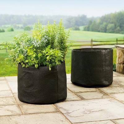 Amazon Com Smart Pots 30 Gallon Smart Pot Soft Sided Container