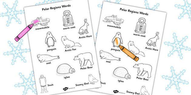 polar region words colouring sheet arctic polar polar region coloring sheets polar animals. Black Bedroom Furniture Sets. Home Design Ideas