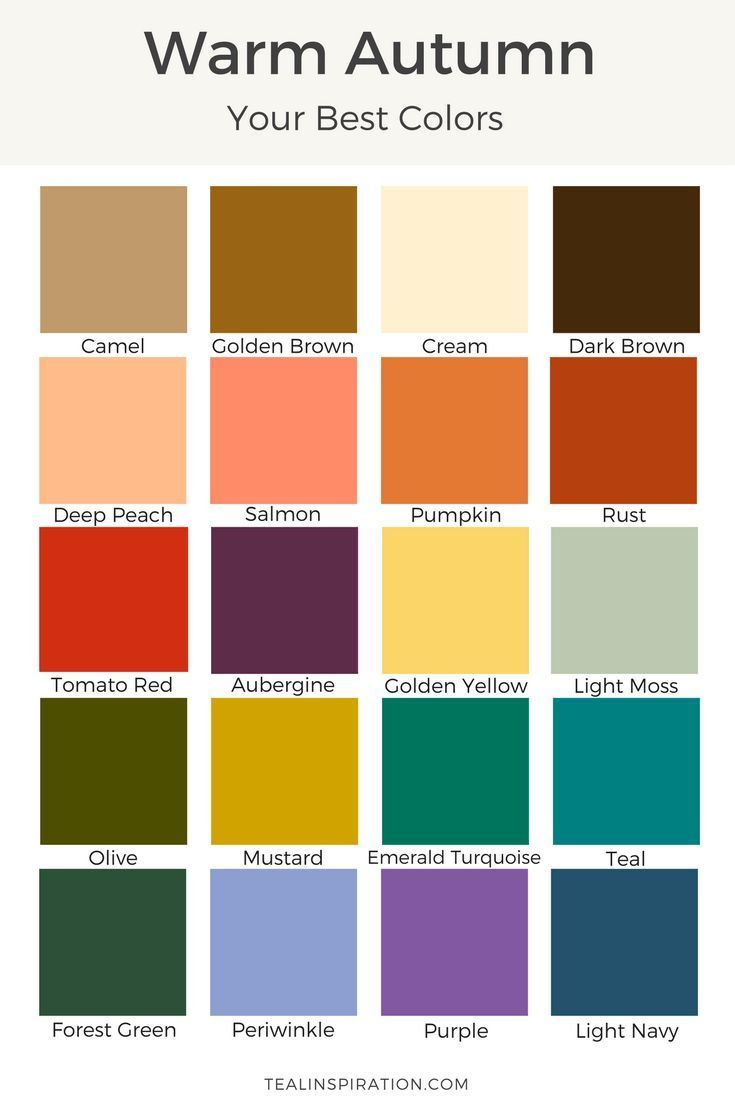 How to Find Your Best Colors | Autumn color palette, Autumn and ...