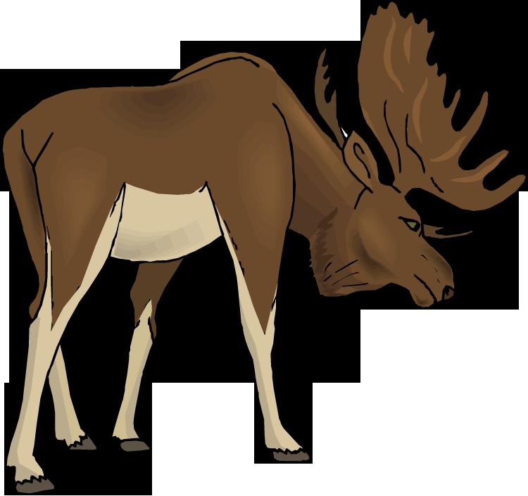 moose clipart cartoon free images 5 clipartingcom cartoon by rh pinterest co uk free moose clipart images christmas moose clipart free
