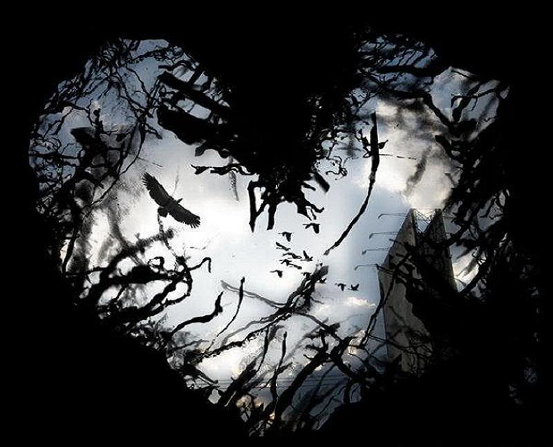 dark heart | DARK HEART tekstovi pesama lyrics | Flower ...