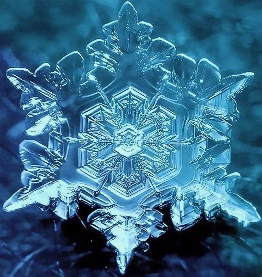 картинки снежинка люблю снимке