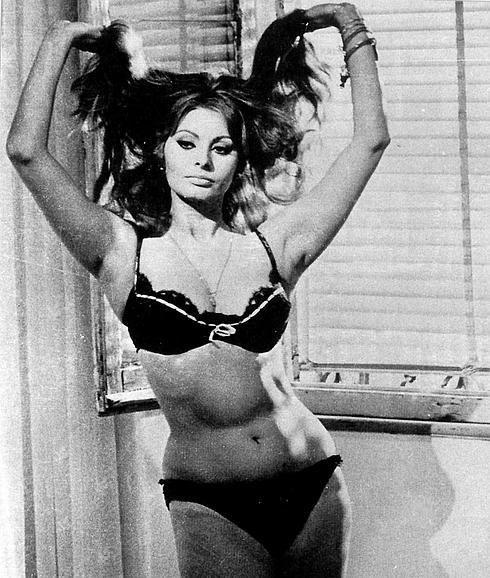 Sophia Loren | SOPHIA LOREN | Sophia loren images, Sophia ...