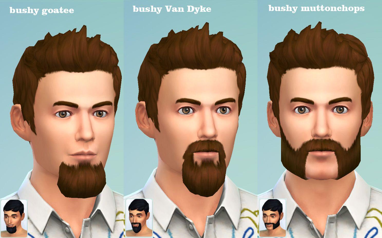 Van Beard