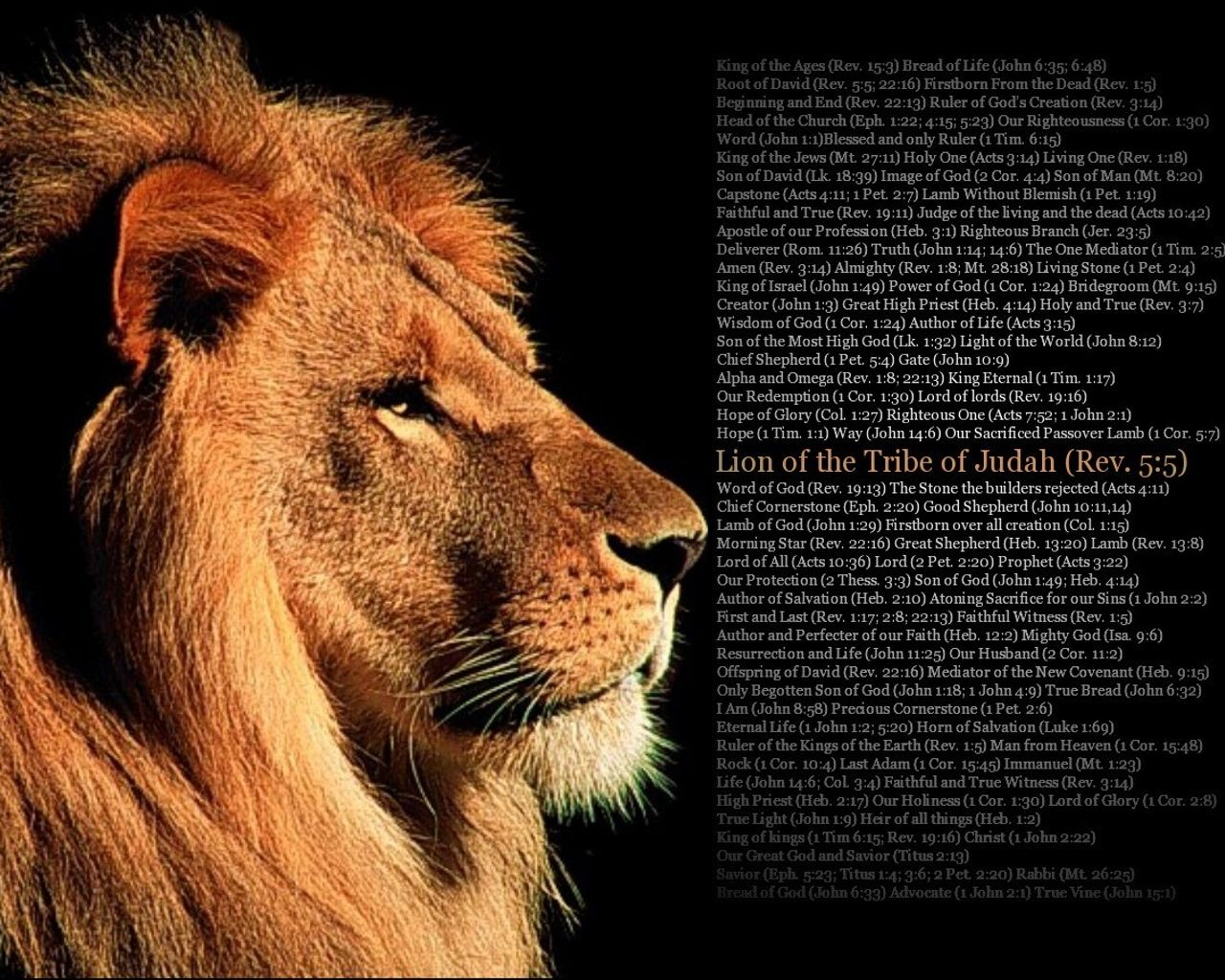 The Love Of Jesus Scriptures The Lion Of Judah With Scripture Hd