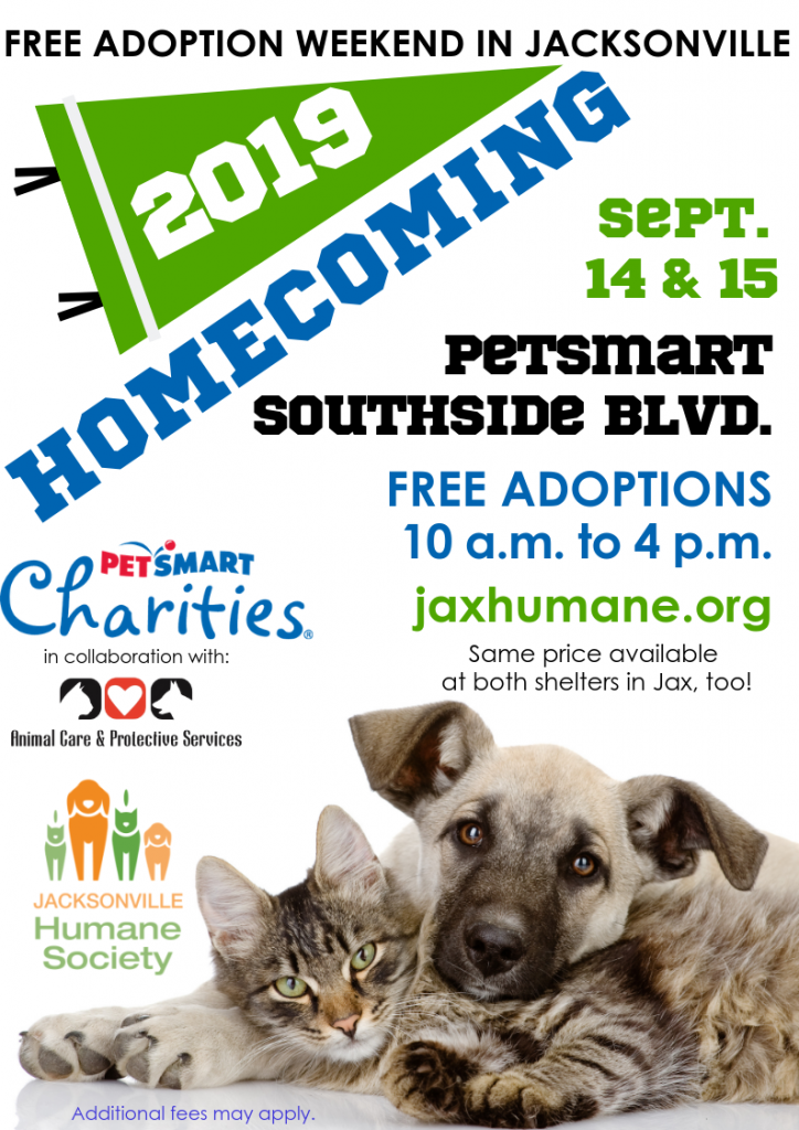 Jacksonville Humane Society Free Adoptions For Homecoming Weekend In 2020 Humane Society Adoption Cat Adoption